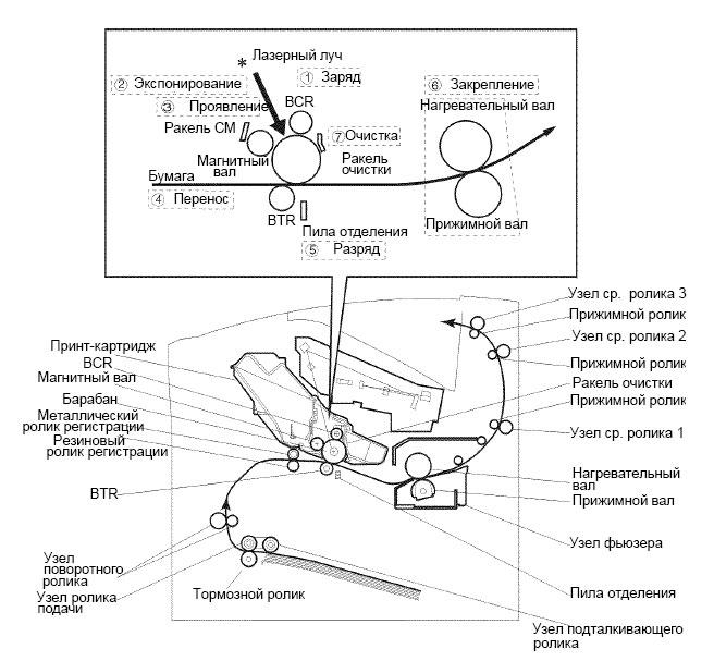 лазерного принтера или МФУ